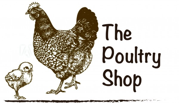 The Poultry Shop (Harare, Zimbabwe) - Phone, Address