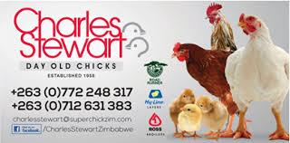 Charles Stewart Day Old Chicks (Pvt) Ltd (Chegutu, Zimbabwe) - Phone
